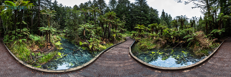 360 Panoramic Photo crossing the old thermal pond at the Whakarewarewa Forest - Rotorua - New Zealand. © Christian Kleiman Photographer, Author, Editor