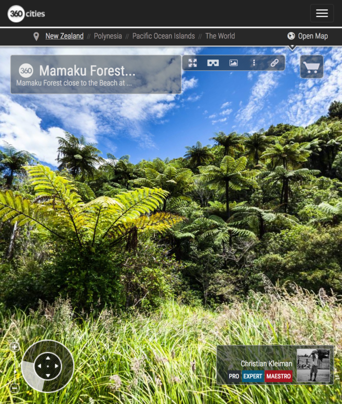 Mamaku Forest into the Beach at Camp Bay, New Zealand - 360 VR Photo