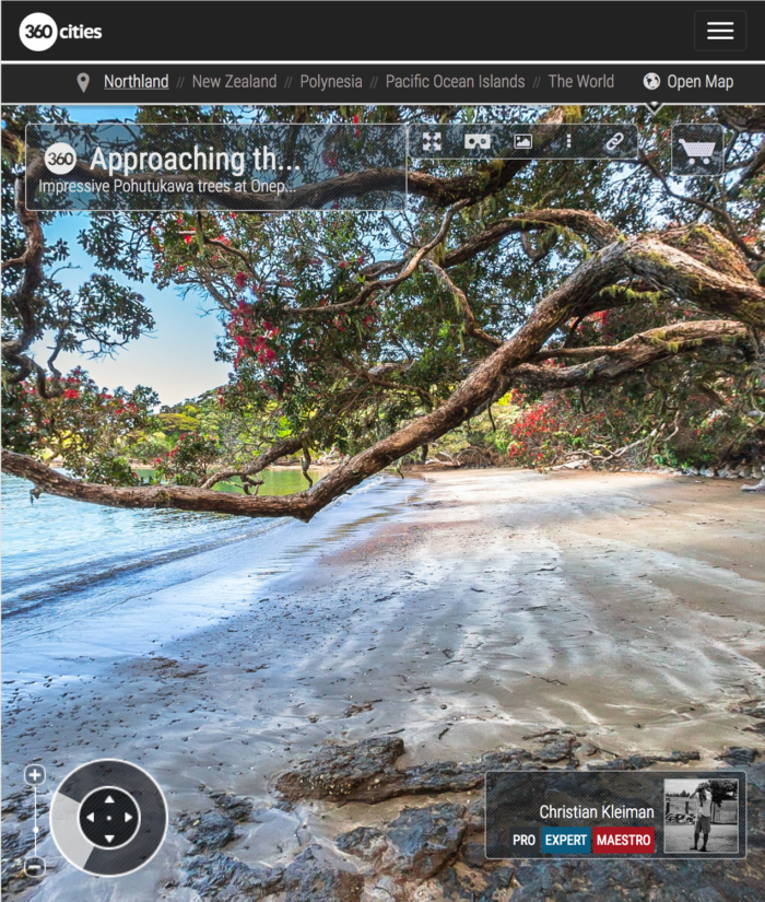 Pohutukawa Tree - Onepoto Bay - Rawhiti, New Zealand - 360 VR Pano Photo