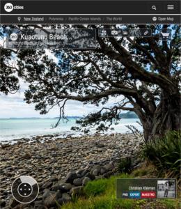 Pohutukawa Tree on Bluff Road - Coromandel Peninsula, New Zealand - 360 VR Pano Photo