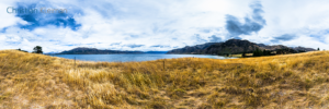 360 VR Photo - Yellow Grass at Lake Hawea - Queenstown, New Zealand