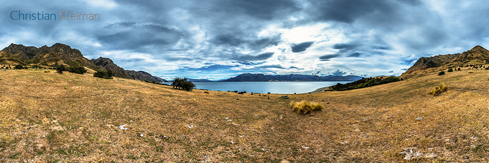 360 VR Photo - Cows and Bulls land at Lake Hawea - Queenstown, New Zealand