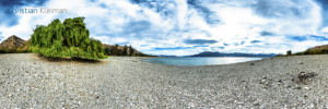 360 VR Photo - Weeping Willow tree on the beach at Lake Hawea - Queenstown, New Zealand