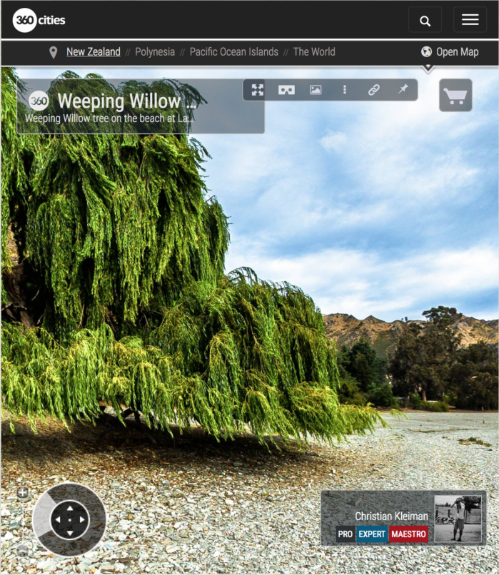 Foto 360 VR - Sauce Llorón del Lago Hawea - Queenstown, Nueva Zelanda
