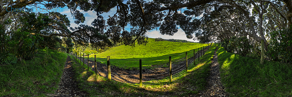 360 VR Photo. Track along the Cliffs at Whiritoa. Coromandel. Waikato, New Zealand