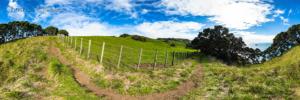 Foto 360 VR. Camino junto a los acantilados de Whiritoa. Coromandel. Waikato, Nueva Zelanda